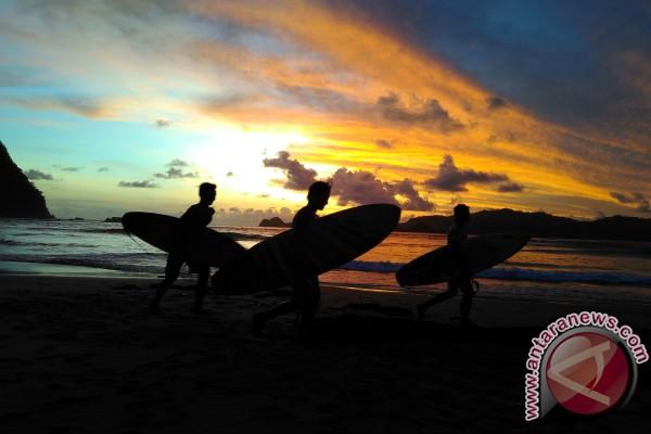 Peselancar Pulau Merah Antara News Jawa Timur Banyuwangi Kab