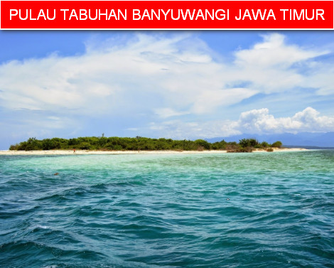 Pulau Tabuhan Perawan Banyuwangi Blog Anak Nelayan Jawa Timur Indonesia