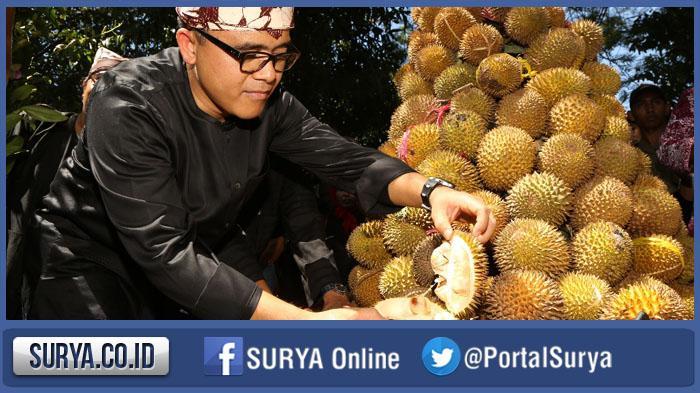 Ribuan Durian Dijual Murah Festival Taman Blambangan Banyuwangi Kab