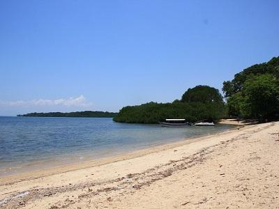 10 Gambar Pantai Bama Banyuwangi Taman Nasional Baluran Situbondo Snorkeling