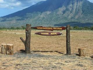 5 Potensi Wisata Alam Taman Nasional Baluran Yuk Piknik Bagi