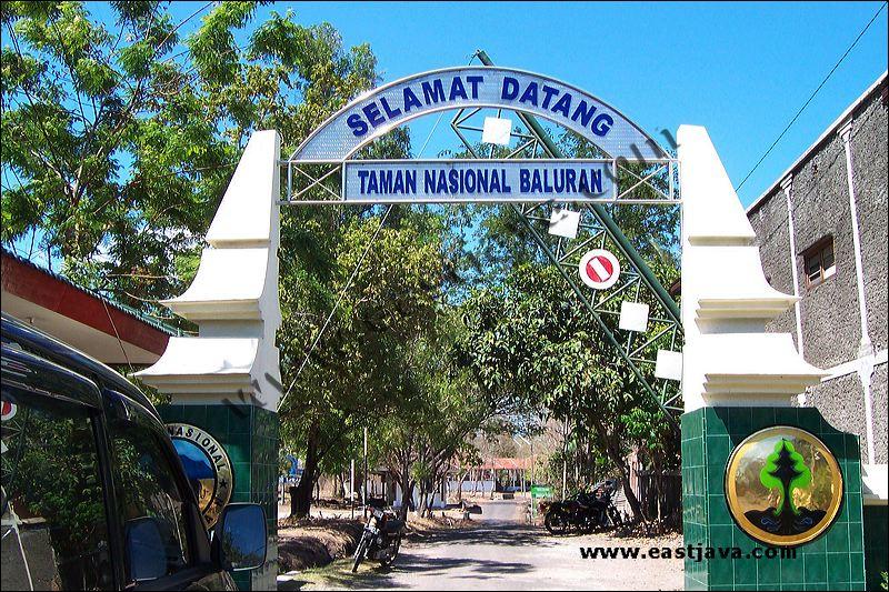 Akses Taman Nasional Baluran Explore Ijen Kab Banyuwangi