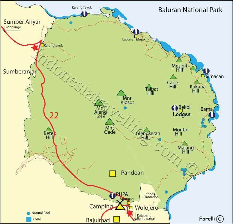 Berkemah Taman Nasional Baluran Greenhat Hacker Gambar Kab Banyuwangi