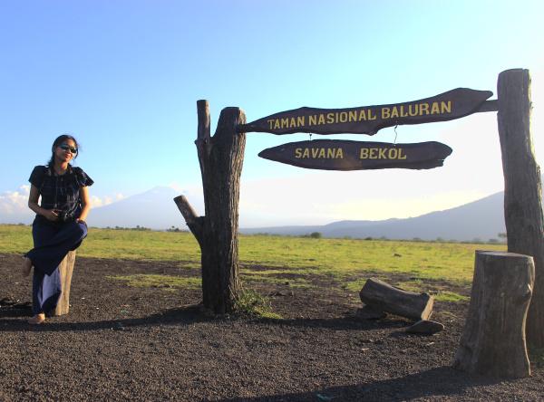 Journey Savana Bekol Taman Nasional Baluran Banyuwangi Berada Perbatasan Kabupaten