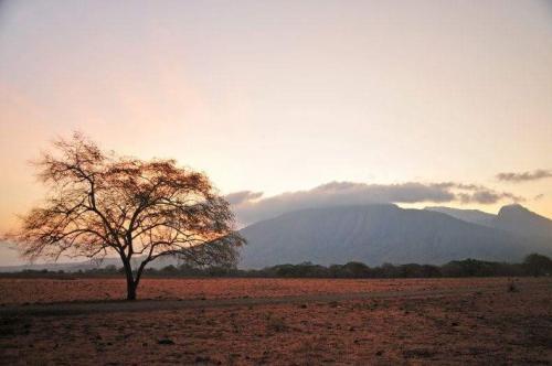 Masya Allah Padang Savana Indonesia Bukan Afrika Dialah Taman Nasional