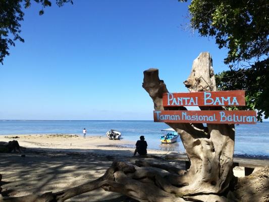 Menikmati Kesenyapan Pantai Bama Taman Nasional Baluran Bisnis Tim Jelajah