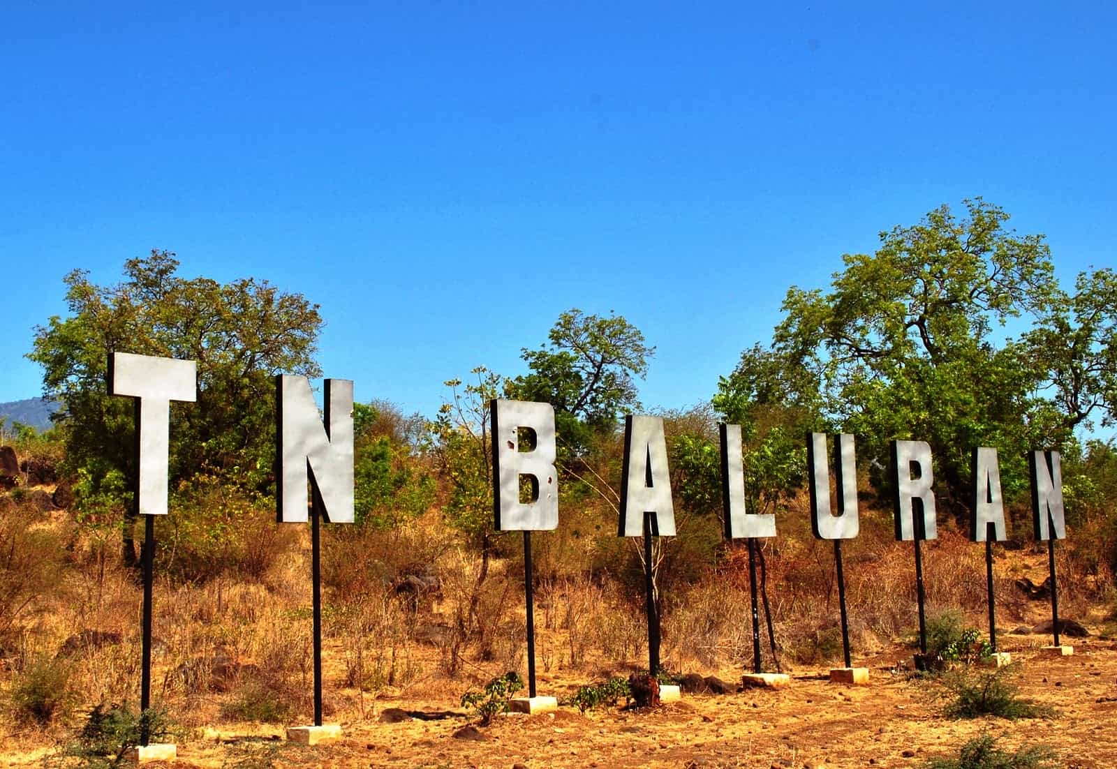 Merasakan Suasana Africa Van Java Taman Nasional Baluran Banyuwa Lokasi
