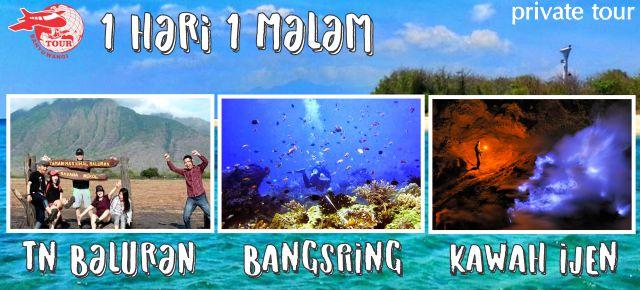 Paket Wisata Banyuwangi 1 Hari Bangsring Underwater Taman Nasional Baluran