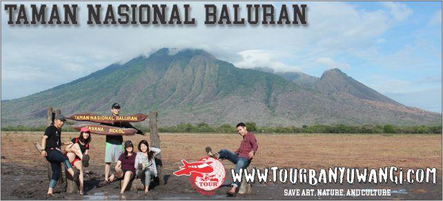Taman Baluran Banyuwangi Afrikanya Indonesia Paket Wisata Nasional Kab