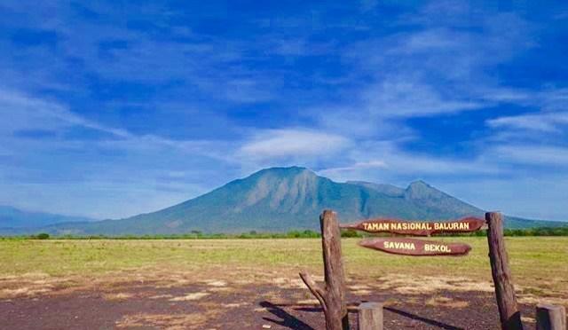 Taman Nasional Baluran Banyuwangi Savana Ujung Timur Jawa Kab