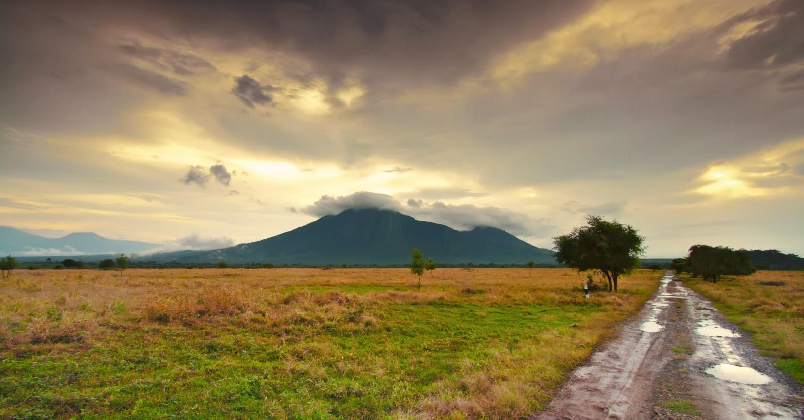 Taman Nasional Baluran Eksotisme Afrika Pulau Jawa Timur Kab Banyuwangi