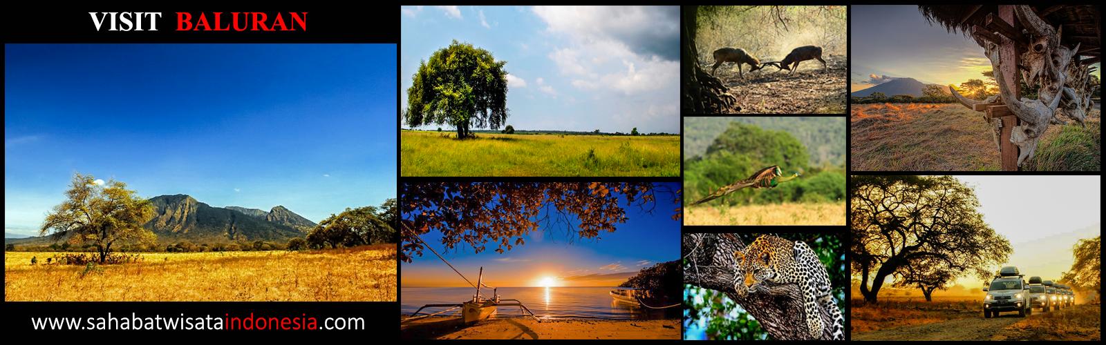 Taman Nasional Baluran Kab Banyuwangi