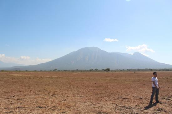 Taman Nasional Baluran Picture National Park Situbondo Kab Banyuwangi