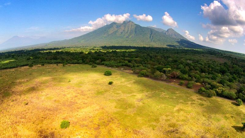 Taman Nasional Baluran Situbondo Afrika Versi Indonesia Yuk Piknik Bilang