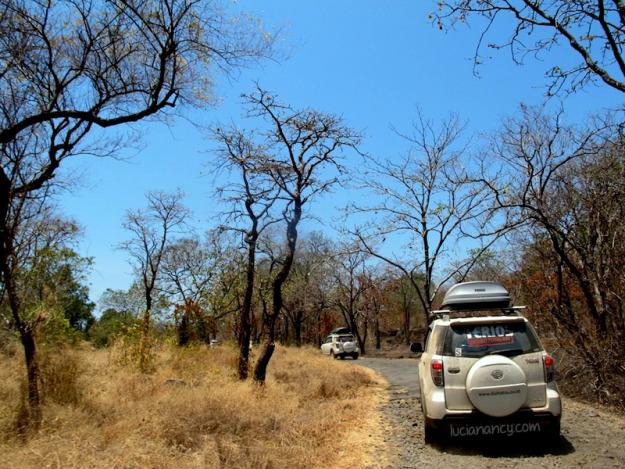 Taman Nasional Semangat Muda Nama Baluran Diambil Gunung Berada Kawasan