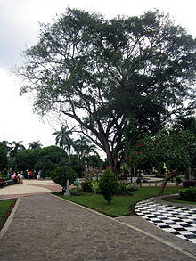 Taman Sritanjung Wikipedia Bahasa Indonesia Ensiklopedia Bebas Kab Banyuwangi