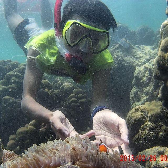 Blue Bay Teluk Banyuwangi Serasa Liburan Mewah Luar Pantai Memiliki