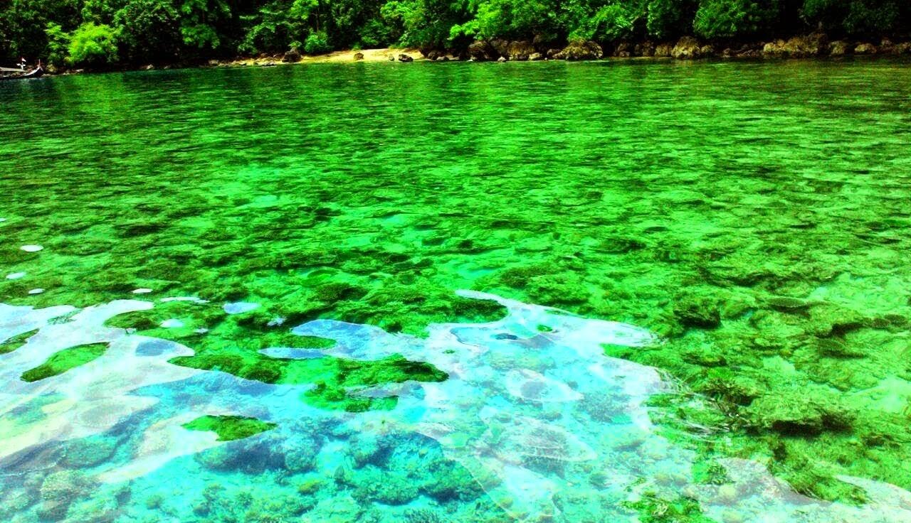 Kacamatawisata Wisata Teluk Biru Banyuwangi Menjadi Surga Lokasi Objek Berada