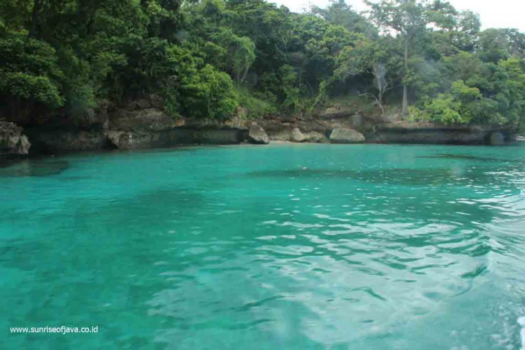 Paket Wisata Teluk Biru Surga Bawah Laut Banyuwangi Kab
