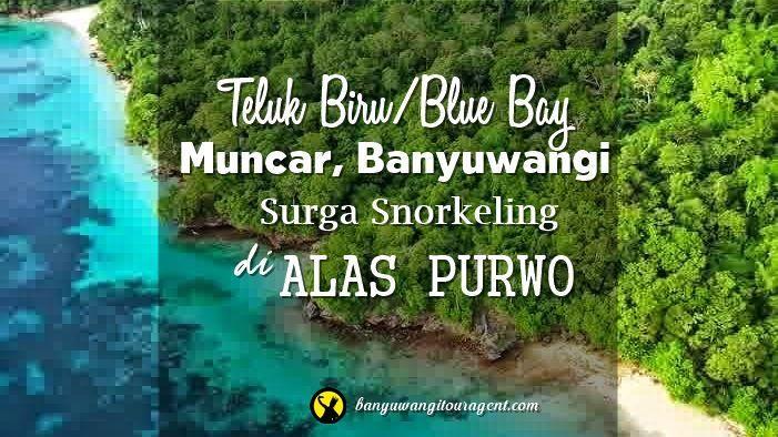 Teluk Biru Muncar Banyuwangi Disebut Blue Bay Dulunya Bernama Selanggrong
