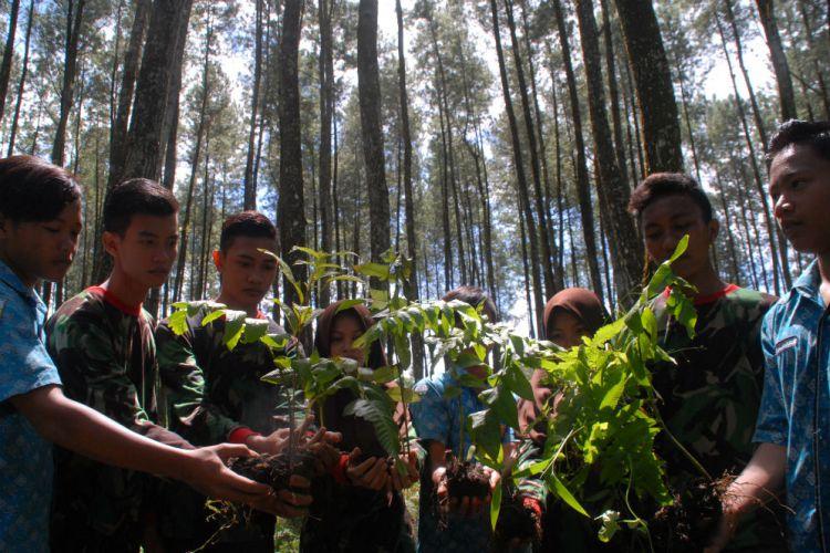 Banyuwangi Merdeka Pemuda Karo Adventure Songgon Ramai Tanam Pakis Wisata