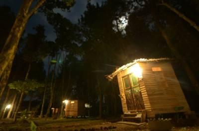 Hotel Wisata Pinus Songgon Banyuwangi Indonesia Booking Property Karo Adventure