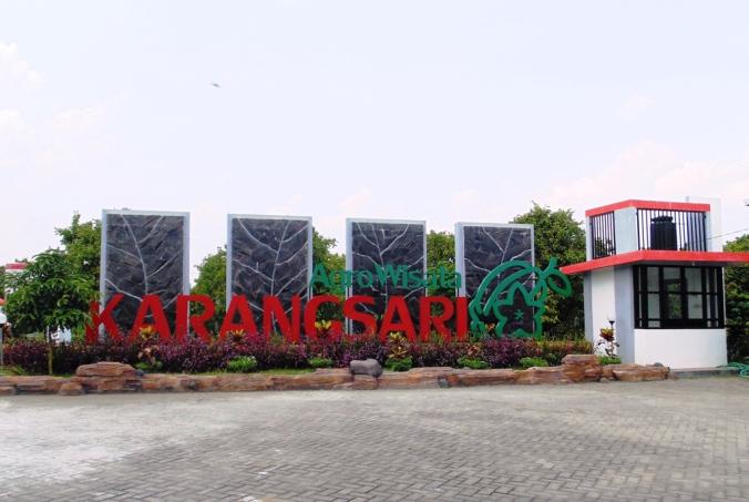 Kampung Belimbing Coklat Kabar Ardian Agro Wisata Karangsari Blitar Agrowisata