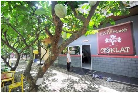 Cakrawala Post Umm 2015 Potensi Kampung Coklat Sebagai Wisata Edukasi