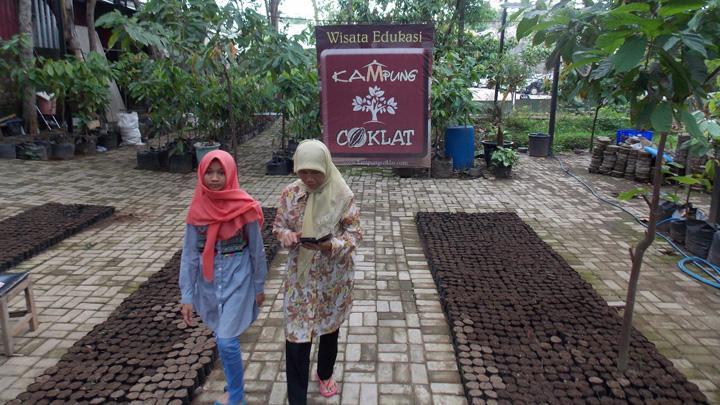 Kampung Coklat Blitar Pilihan Menarik Liburan Akhir Travel Pengunjung Berbelanja