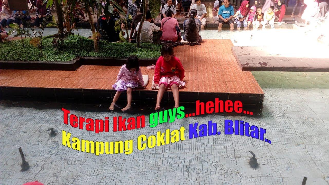 Terapi Ikan Kampung Coklat Kab Blitar Hehee Edisipulkamlebaran2017 Cokelat