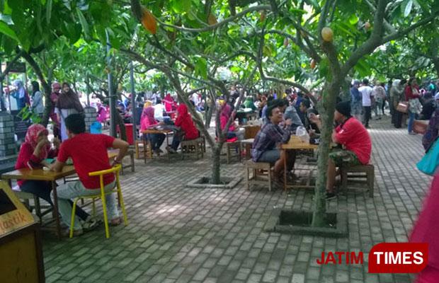 Wisata Kampung Coklat Angkat Ekonomi Warga Desa Plosorejo Jatim Edukasi