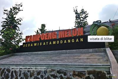 Kampung Melon Blitar Fauzi Explore Desa Wisata Modangan Kab