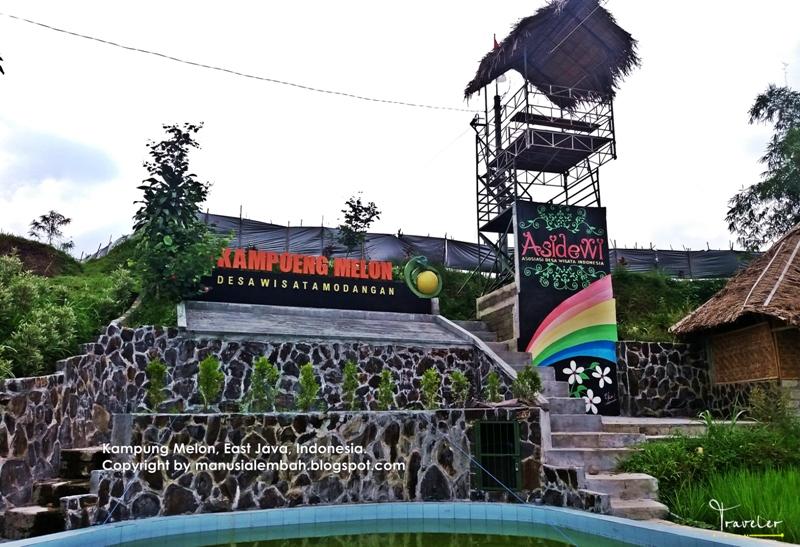 Kampung Melon Mengenal Budidaya Mister Kabupaten Blitar Desa Wisata Modangan