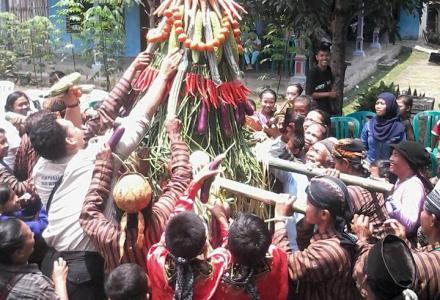 Website Desa Modangan Gelar Ritual Budaya Petik Sedekah Bumi Kampung