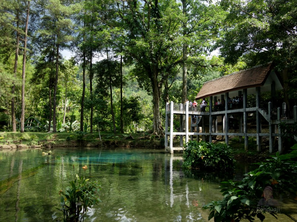 5 Tempat Wisata Seputar Rute Kebun Teh Sirah Kencong Panduaji