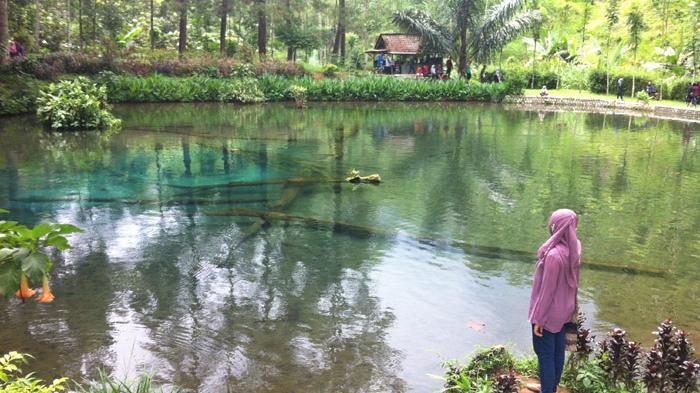 Menikmati Wisata Rambut Monte Blitar Gusar Surya Kebun Ikan Kab