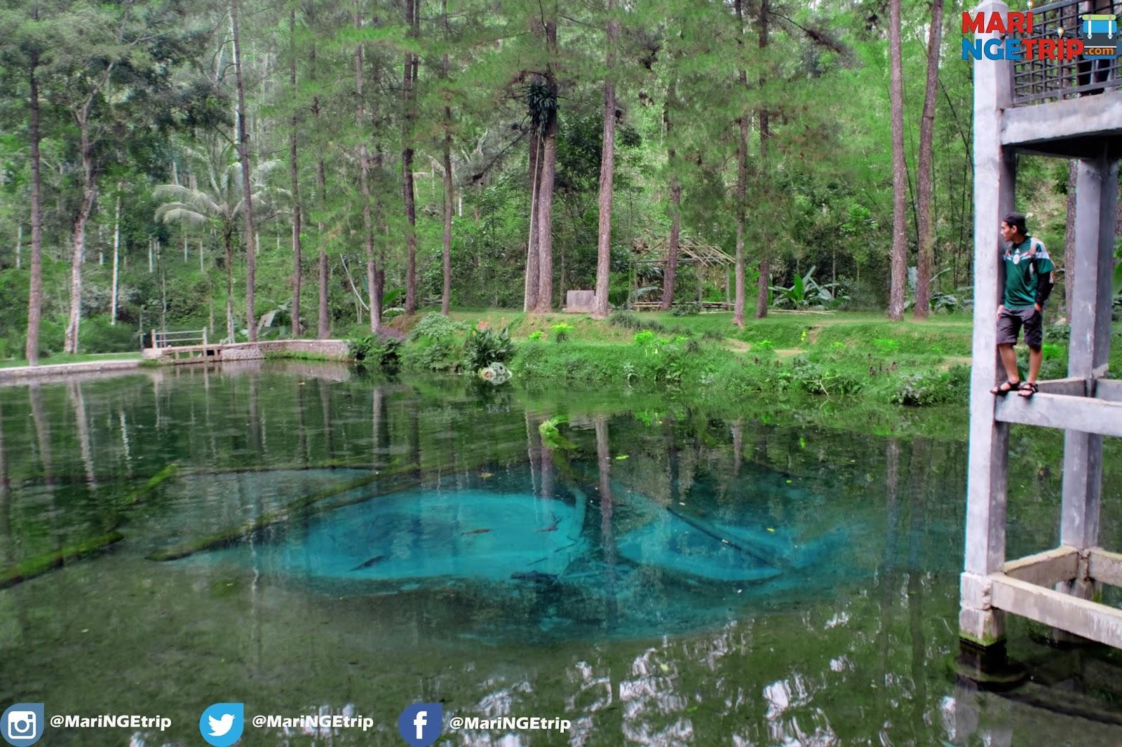 Pesona Keindahan Telaga Rambut Monte Blitar Wisata Indonesia Kebun Ikan
