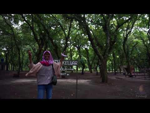 Jalan Penangkaran Rusa Kesambi Trees Park Maliran Kab Blitar