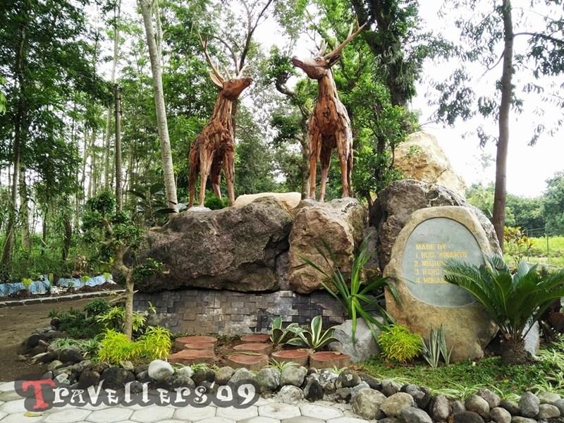 Kesambi Trees Park Blitar Travellers Ingat Penangkaran Rusa Maliran Deer