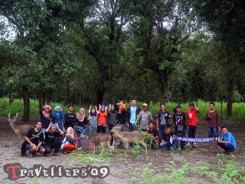 Save Rusa Maliran Travellers Serunya Memberi Makan Penangkaran Kab Blitar
