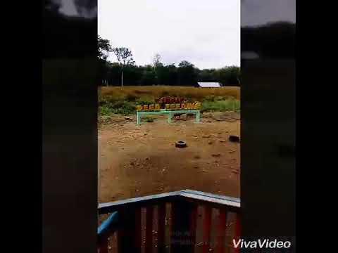 Wisata Maliran Kawasan Penangkaran Rusa Kabupaten Blitar Youtube Kab