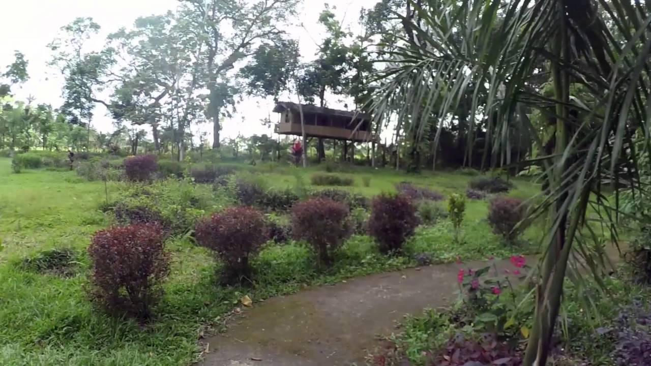 Wisata Alam Paco Kab Blitar Youtube Taman Hijau
