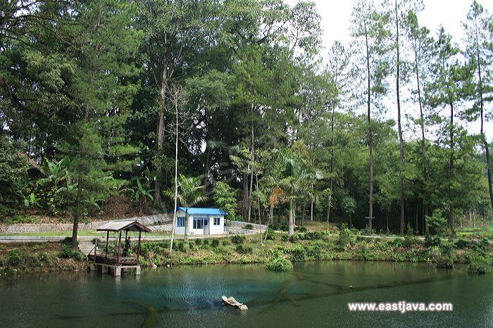 Galeri Foto Wisata Rambut Monte Blitar Jawa Timur 17 Galleries