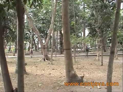 Kebon Rojo Blitar East Java Youtube Taman Kab