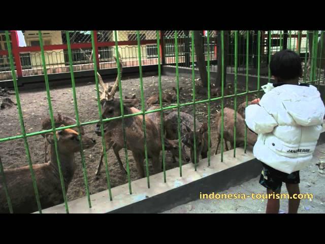 Kebon Rojo Tourism Blitar Travelerbase Traveling Tips Taman Kab