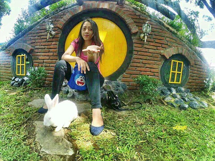 Rabbit Park Blitar Info Harga Tiket Masuk Hotel Dekat Lokasi