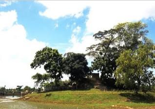 17 Destinasi Wisata Kota Blora Jawa Tengah Daftar Tempat Pesona