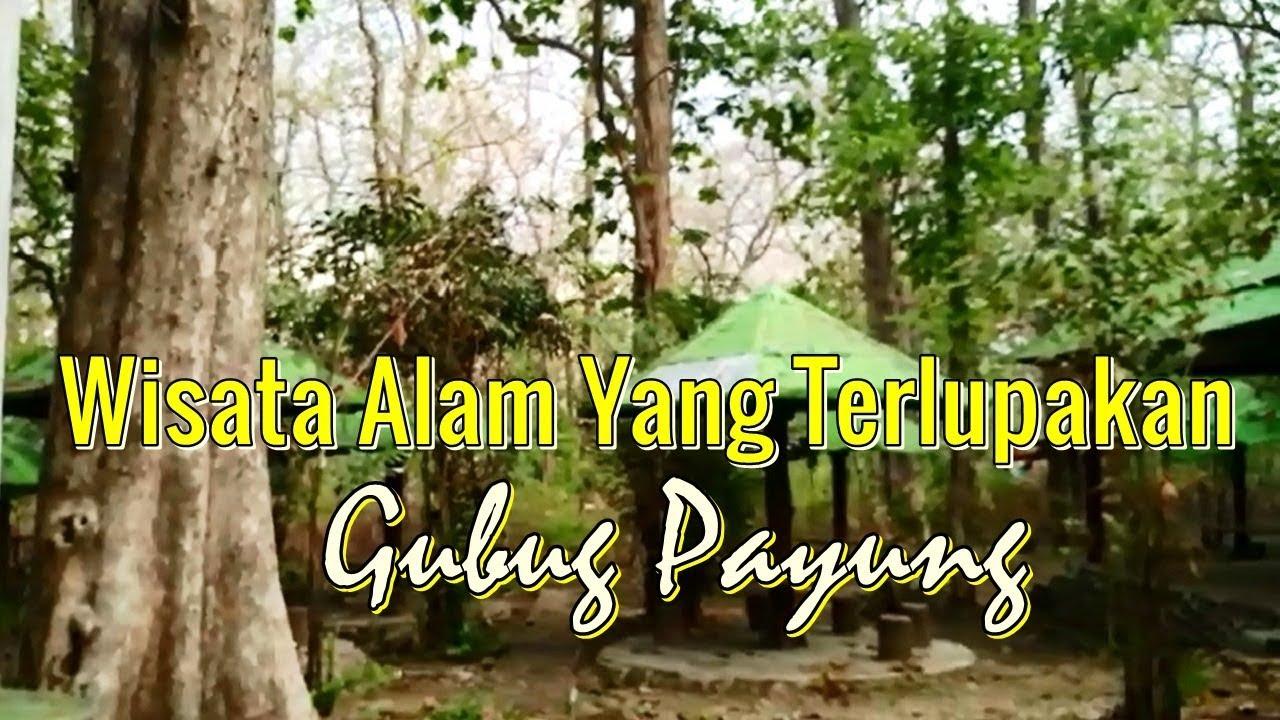 Miris Tempat Wisata Blora Monumen Jati Alam Gubug Payung Youtube