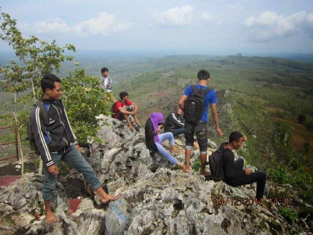 Pencu Puncak Jpg Warga Ditanami Jagung Cabai Rawit Tanaman Persil