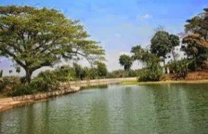 Destinasi Tempat Objek Wisata Kabupaten Blora Waduk Bentolo Kampung Bluron